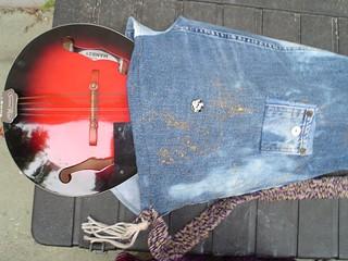 mandolin case