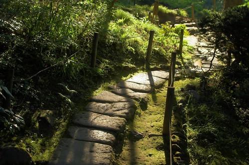 Path in the Garden | by laurenz