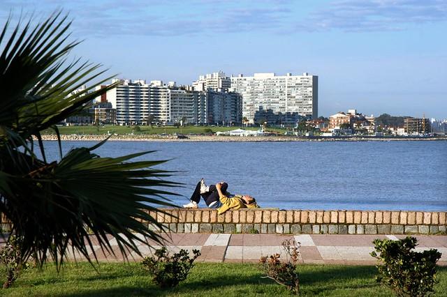Montevideo dreamin'