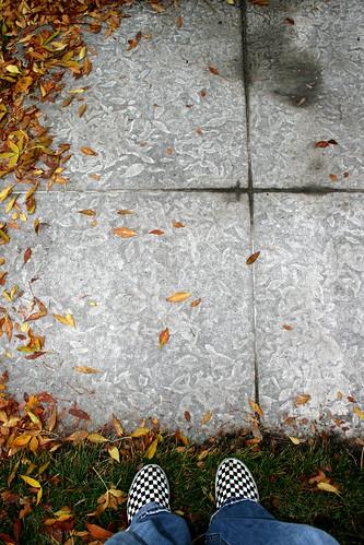 me leaf tyler sidewalk vans leafprint ©tylerknottgregson