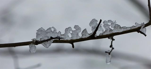 Frozen snow shapes