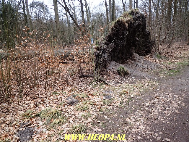 2018-03-17 Ankeveen 40 km (10)