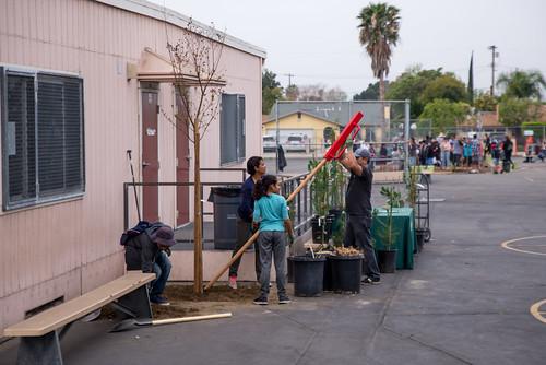 Vena Elementary School Tree Planting