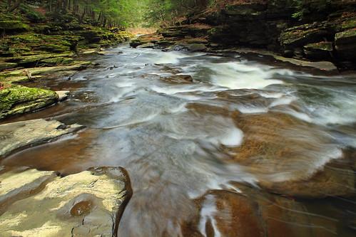 autumn trees creek rocks stream hiking pennsylvania cascades creativecommons ravine wyomingcounty endlessmountains clintontownship southbranchtunkhannockcreek countrysideconservancy littlerockyglen littlerockyglenpreserve
