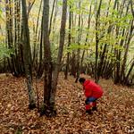 2012.11.09-Llames-Llanos con comida de hermandad