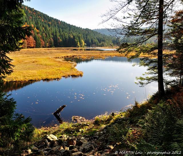 Vosges, lac de lispach