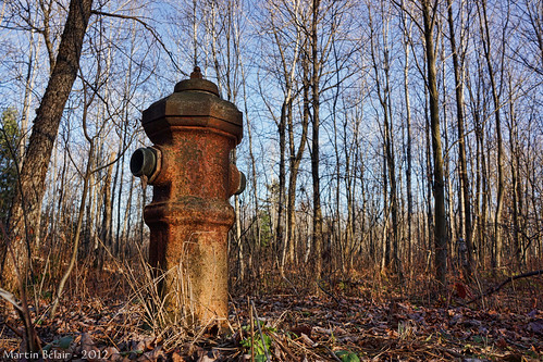 sh68 scavengerhunt101 rust fire hydrant planbouchard bouchard borne fontaine forest forêt nex7 explore explored firehydrant bornefontaine campbouchard apocalyptic postapocalytic post fallout ludlow