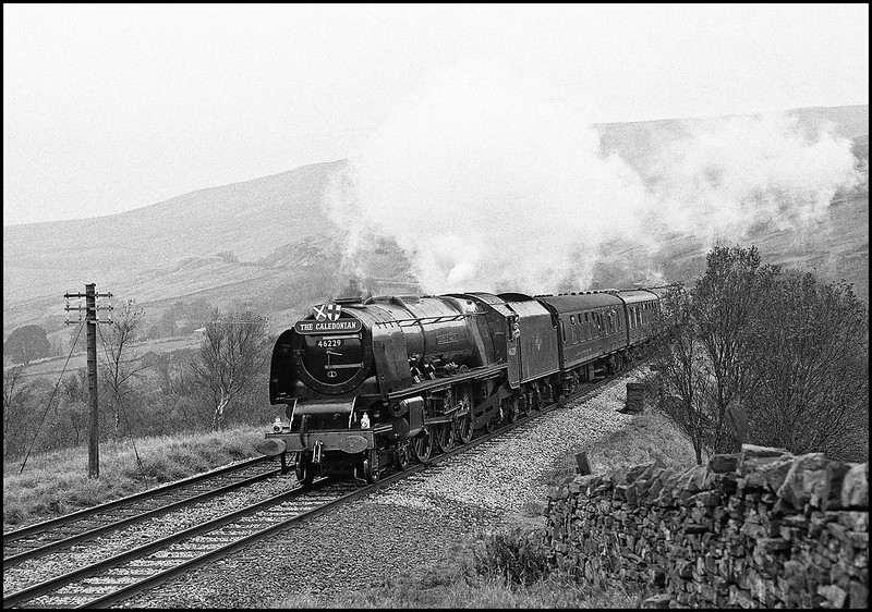 The last time that an unmodified Princess Coronation pacific graced the main line was the occasion of this Southbound CME hauled by 46229 seen here as it approaches Blea Moor tunnel in the fading light.Today just 46235 remains as the only surviving member of the class in fully authentic condition.