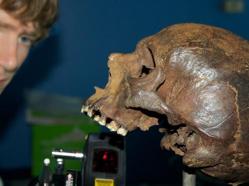 Skeletons from the deep - Mary Rose treasures revealed