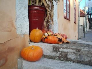 Pumpkins in December...