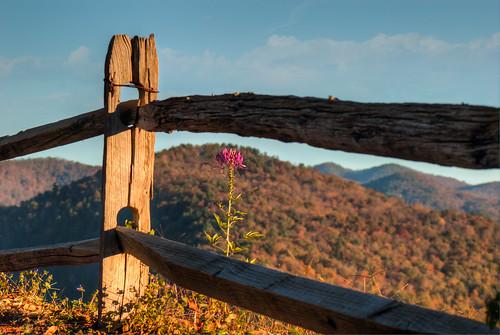 mountains fence southcarolina nhm ngm herowinner ultraherowinner npgm whitewaterfallsoverlook