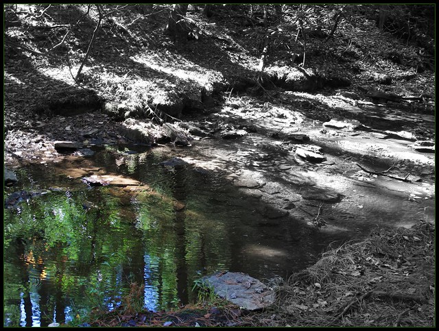 Swallow Falls SP ~ puddle of color - HSS!