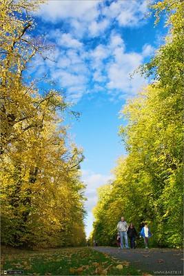 An Autumn Walk in Castletown