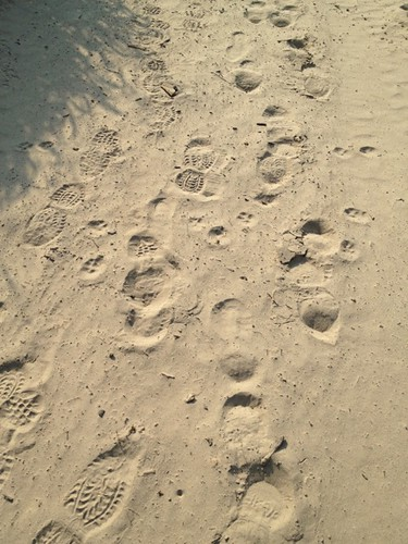 <p>Footprints in the sand show where migrants have recently crossed the Rio Grande into south Texas.</p>