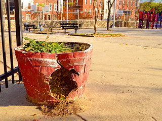 Before - Old Planters