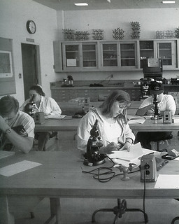 Students in a Pomona College biology lab in 1994