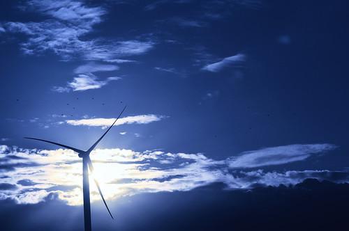 sun soleil sonnenuntergang belgique windturbine windkraftanlage éolienne hainaut frasnes windturbineinthesun
