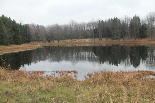 pond valley third zoar andyarthur