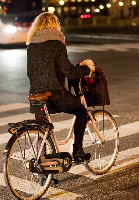 Copenhagen Bikehaven by Mellbin - Bike Cycle Bicycle - 2012 - 9108