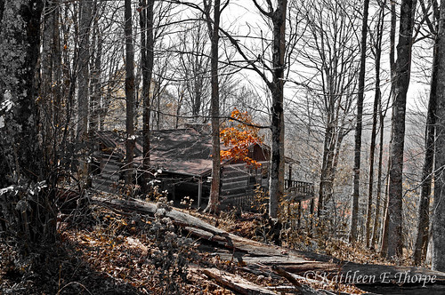 autumn trees red orange mountains fall leaves yellow cabin woods northcarolina autumncolors logcabin selectivecolorization wolflaurel