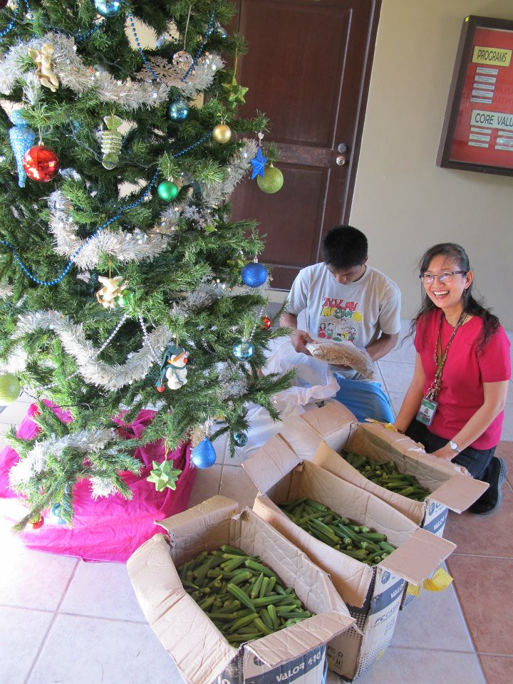 Fresh Christmas Tree Philippines.Food Bank Philippines Delivered Fresh Okra To Tuloy Founda
