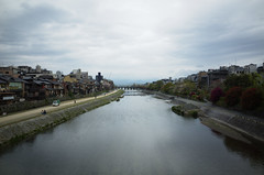 Kamo River on a rainy spring morning, Kyoto, April 2016