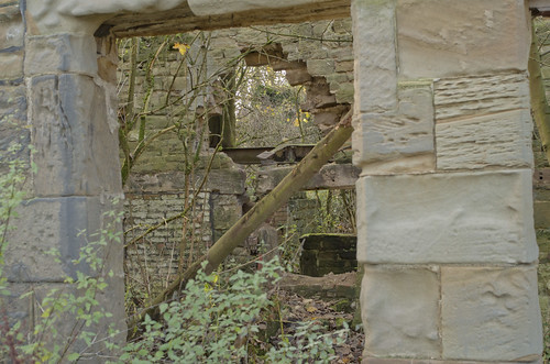 Newland Hall ruins #5 | by stesykes