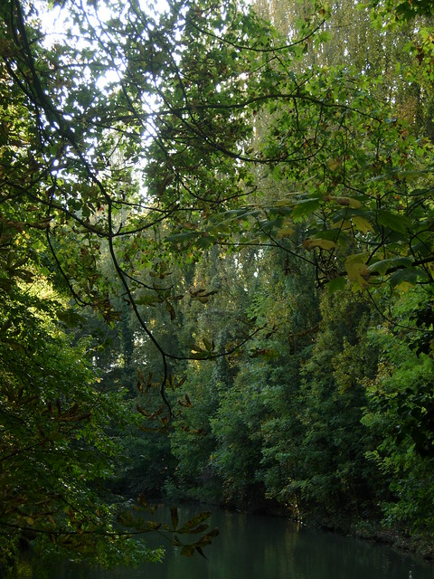Oct 2007: an afternoon in Yerres