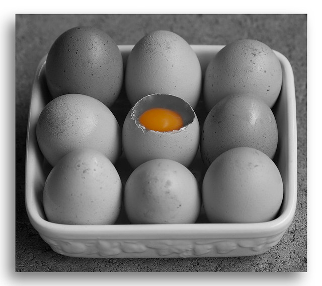 Black & White and selective color of nine eggs