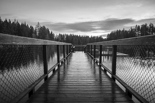 monochrome monochromatic blackandwhite blackwhite yellow lake klahanie washingtonstate washington issaquah sammamish landscape perspective wide angle mood moody dock boardwalk path trail king county eastside pentax k5iis 15mm sunrise pnw pacificnorthwest morning winter