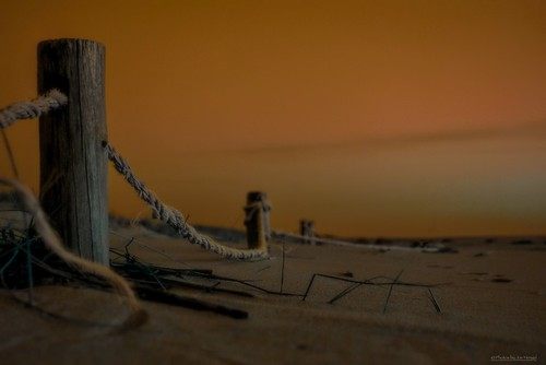 alienlandcape lewes lewesde delaware de lowerslowerdelaware lsd capehenlopenstatepark statepark park capehenlopen seaside seascape seashore beach morning sand fence seafence rope hss happyslidersunday slidersunday sunday post posts
