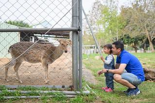 20180304-123親子兒童寵物 rumax 攝影師 | by RuMax 2010