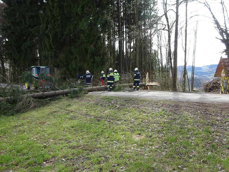 StraßeFreimachenGeisberg-2
