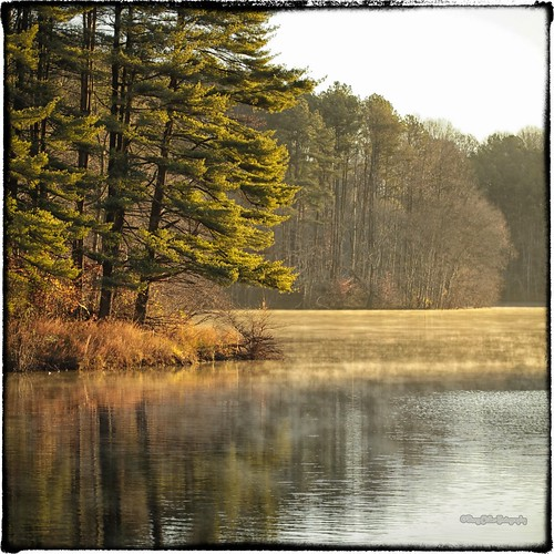 autumn trees mist fall water sunrise md nik libertylake carrollcounty canonef100mmf28lmacroisusm colorefexpro4 ©2012dougmillerphotography