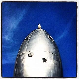 Rocket & Chicken