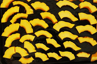 sliced delicata squash | by Stacy Spensley