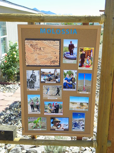 Molossia Pictoral Highlights   by J. Stephen Conn