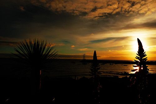 sunrise silhouettes lanzarote canaries