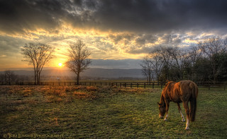 Last Warmth | by Tom Lussier Photography