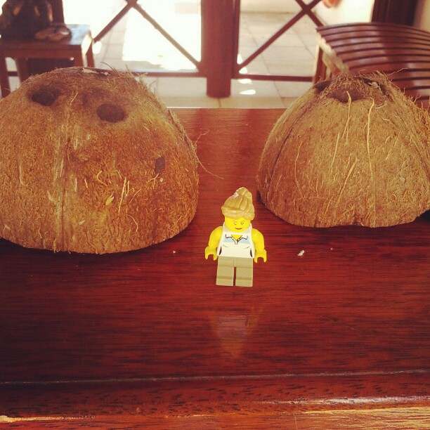 Zu Groß Um Daraus Einen Kokosnuss Bh Zu Basteln Legos