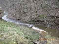 Discharge into Raccoon Creek