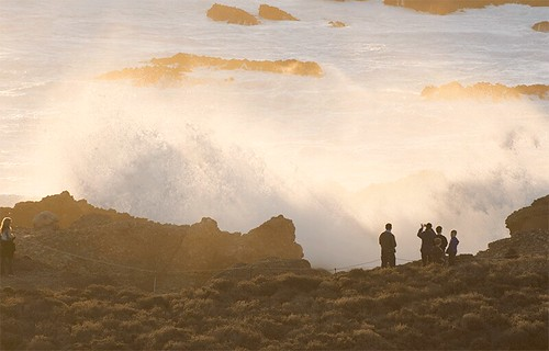 Point Lobos Wave Watchers [GIF] | by placenamehere