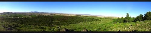 africa forest pin north peak morocco maroc eucalyptus oriental northern foret nord afrique jbel شمال sommet pinus hamra alep oujda المغرب جبل غابة الشرق حمرة وجدة إيفريقيا
