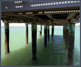Beneath the pier at Corinella, Western Port Bay.