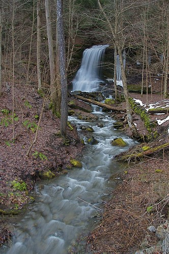 waterfall highwater fallentree bucktailfalls spaffordvalley