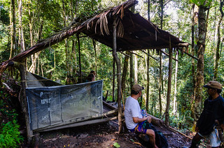 Rainforest sleeping shelter | by Jerome Nicolas
