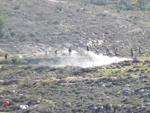 landscape israel demonstration teargas