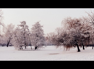 snow | by Judy **