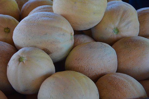 Cantaloupes | by Michele Dorsey Walfred