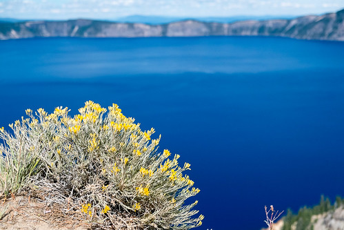 Blue and yellow. Crater Lake | by Laura Jacobsen